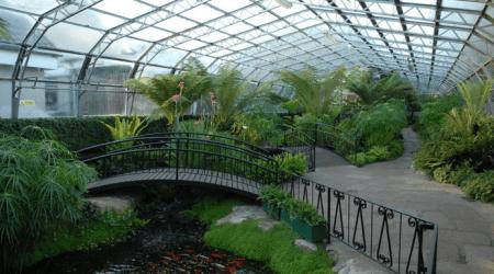 Зимний сад на 5000 кв.м