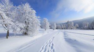 zima-v-pomeste