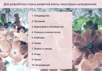 mark-plan