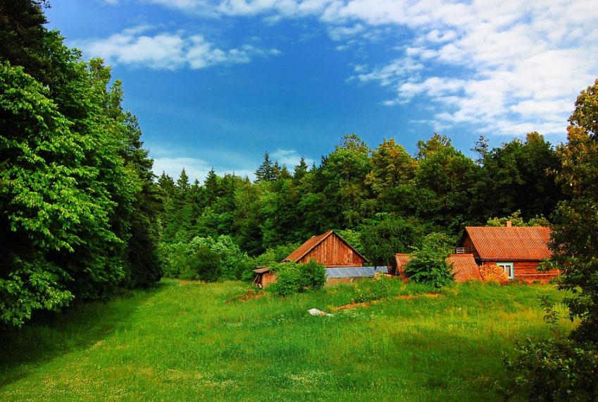 Как получить земельный участок в аренду или бесплатно