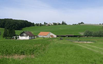 Строительство на землях сельхозназначения. Полная инструкция
